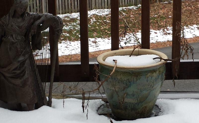 Snow Dec 2013a