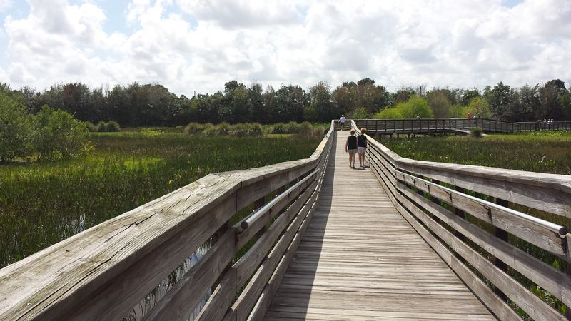 Nature Reserve Florida 2015
