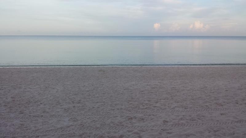 Morning on Naples Beach  July 2017