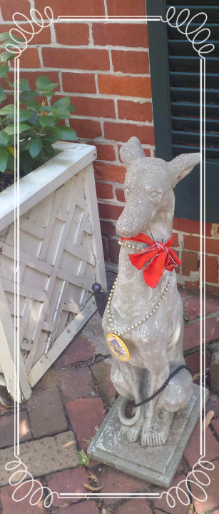 Guard Dog in Old Town Alexandria